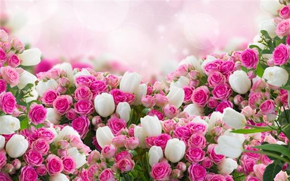 Fondos de pantalla Muchas flores, tulipanes blancos, rosa rosa