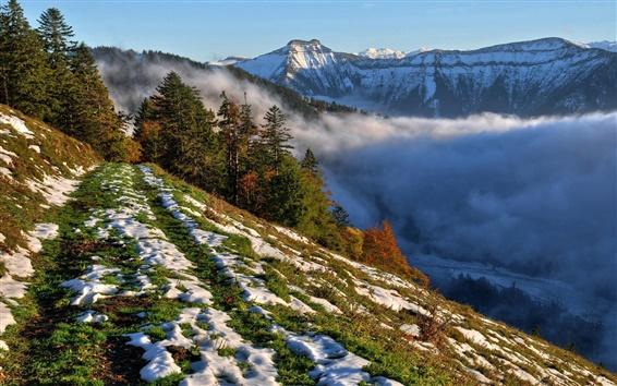 Papéis de Parede Manhã, declive, neve, árvores, montanhas, nevoeiro, céu