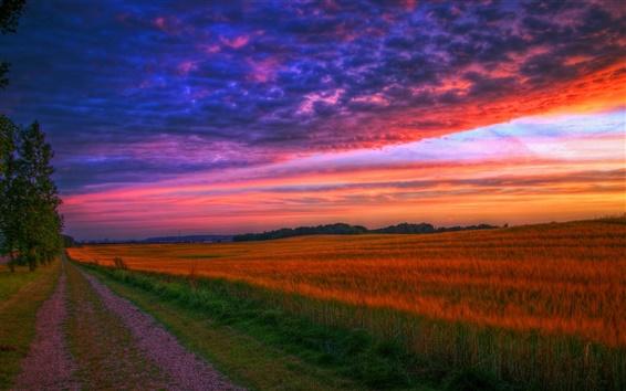 Fondos de pantalla Naturaleza paisaje, puesta de sol, carretera, campos, árboles