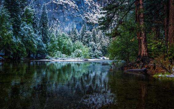 Wallpaper Nature landscape, winter, forest, National Park, river