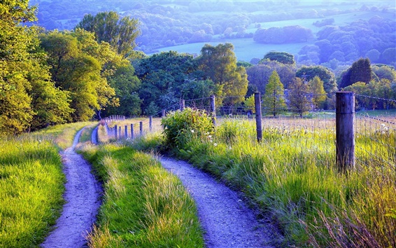 Wallpaper Nature scenery, fence, road, grass, trees