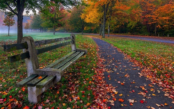 Wallpaper Park, trees, leaves, grass, road, bench, colors, autumn