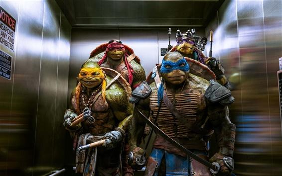 Papéis de Parede Teenage Mutant Ninja Turtles 2014 filme