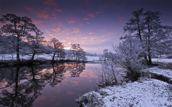 Fond d'écran Les arbres, coucher de soleil, rivière, hiver