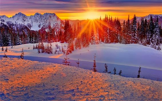 Wallpaper Washington, USA, winter, mountains, trees, snow, sunset