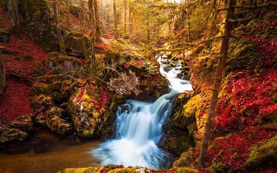 Wallpaper Waterfall, trees, autumn