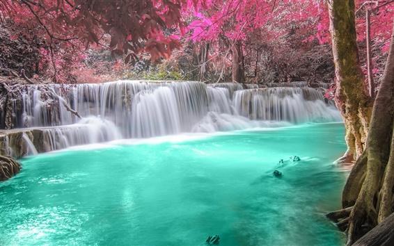 Обои Водопады, лес, река, осень