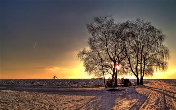 壁紙 冬の風景、雪、道路、木、日没