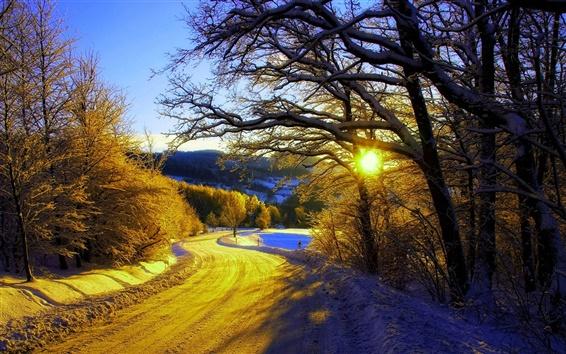 Wallpaper Winter morning, snow, trees, road, sunrise