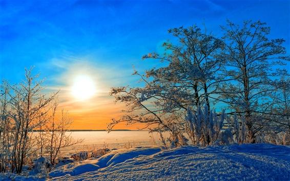 배경 화면 겨울, 나무, 눈, 일몰, 푸른 하늘