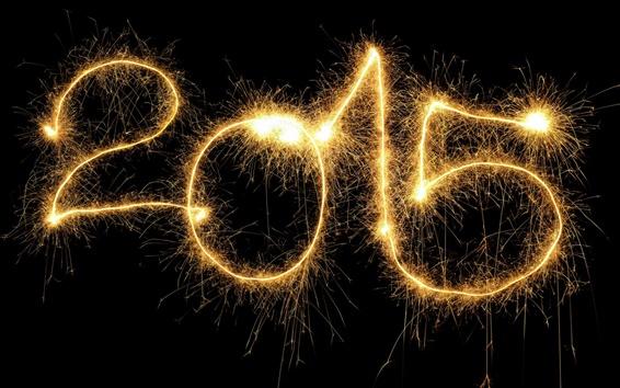 壁紙 2015年正月、美しい花火、夜