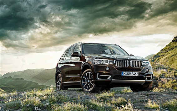 Wallpaper BMW X5 brown SUV car