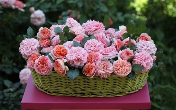Wallpaper Basket, pink flowers, rose