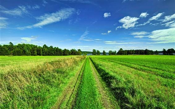 Wallpaper Beautiful scenery, sky, clouds, trees, fields, road