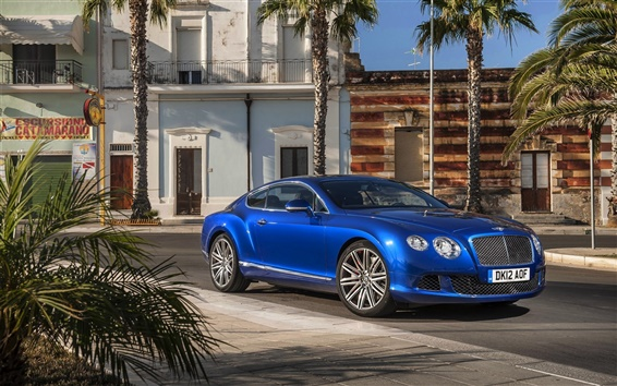 Обои Bentley Continental GT синий автомобиль, пальмы