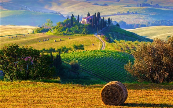 Wallpaper Italy, Tuscany, nature landscape, fields, haystacks, farms, sunrise, morning