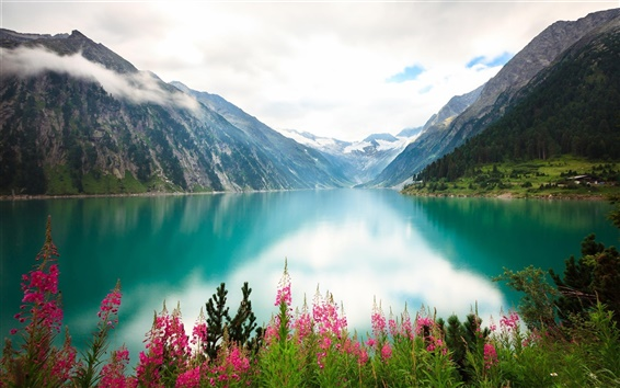 Wallpaper Lake, flowers, mountains, clouds