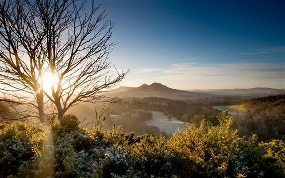 Обои Утро, рассвет, свет, горы, деревья