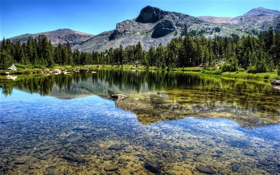 Wallpaper Mountain, forest, river, lake, Yosemite National Park