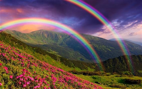 Fond d'écran Nature paysage, montagnes, fleurs, arc en ciel