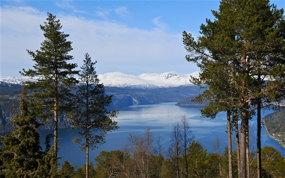 Fond d'écran Norvège fjord, montagnes, arbres, ciel bleu