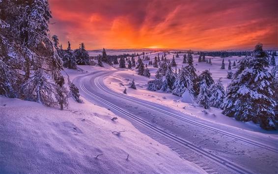 Fond d'écran Norvège, hiver, neige, route, arbres, coucher de soleil