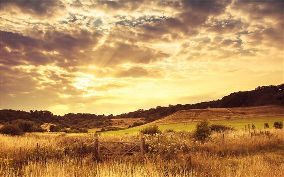 Papéis de Parede Quente sol paisagem, crepúsculo, nuvens, grama, árvores, cerca