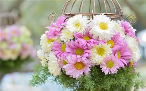 Papéis de Parede Flores cor de rosa branca, crisântemo, cesta