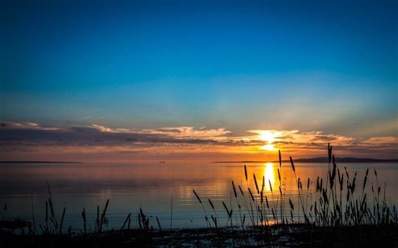 Fond d'écran Australie, Port Lincoln, rivière, coucher de soleil, ciel, l'herbe