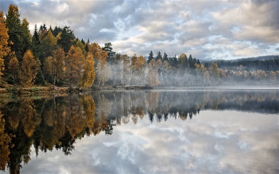 Fondos de pantalla Otoño, lago, bosque, árboles, mañana, niebla