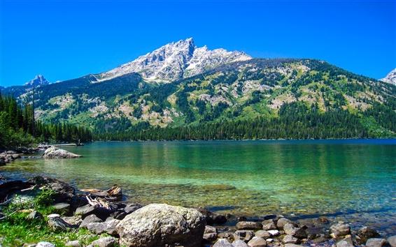 Fond d'écran Emerald Lake, Parc national de Grand Teton, Wyoming, Etats-Unis, montagnes