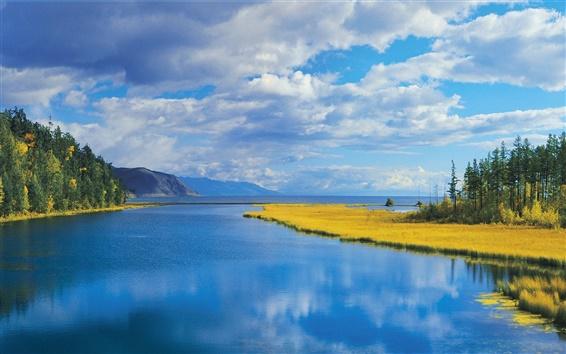 Fondos de pantalla Bosque, río, montañas, árboles, hierba, otoño