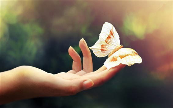 Wallpaper Hand, fingers, butterfly