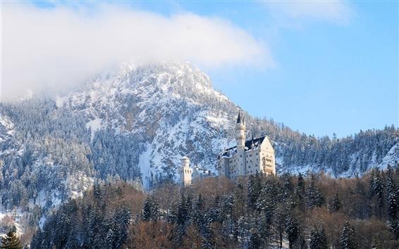 Обои Нойшванштайн, Германия, Бавария, замок, зима, деревья