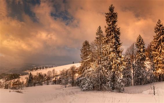 Wallpaper Zakopane, Poland, winter, snow, trees, clouds, dusk