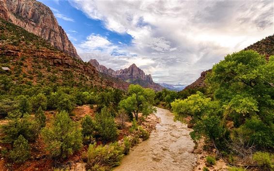 Обои Национальный парк Сион, река, горы, деревья, США