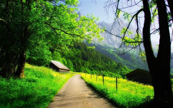Wallpaper Beautiful spring, mountain, house, trees, road, green