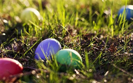 Fond d'écran Oeufs de Pâques dans l'herbe