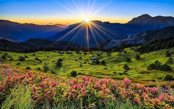 Wallpaper Mountains, meadow, sunrise, flowers, beautiful scenery