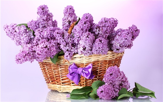 Wallpaper Purple lilac, basket, flowers