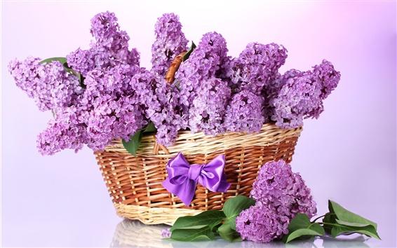 배경 화면 보라색 라일락, 바구니, 꽃