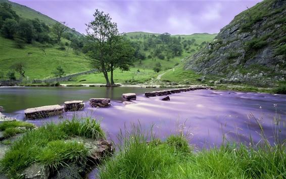 배경 화면 강, 하늘, 돌, 나무, 잔디, 경사