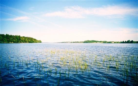 Wallpaper Russia, river, sky, Volga, grass