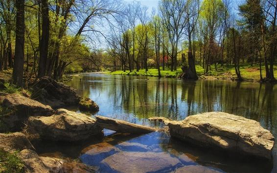 Papéis de Parede Spring, rio, árvores, pedras, grama