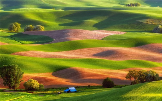 Wallpaper Steptoe Butte State Park, USA, fields, trees, house