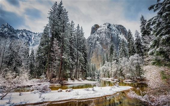 Fond d'écran États-Unis, Californie, Parc National de Yosemite, les montagnes, les arbres, la neige, l'hiver