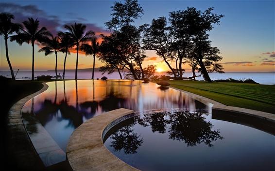 壁紙 アメリカ、ハワイ、マウイ島、日没、プール、木、シルエット