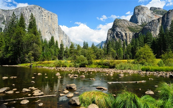 Wallpaper Yosemite National Park, mountains, forest, trees, rocks, river