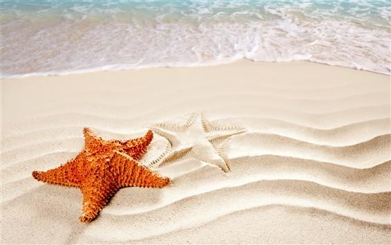 Wallpaper Beach, sand, surf, starfish