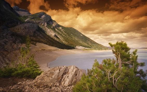 Fond d'écran Plage, mer, côte, pierres, arbres, coucher de soleil